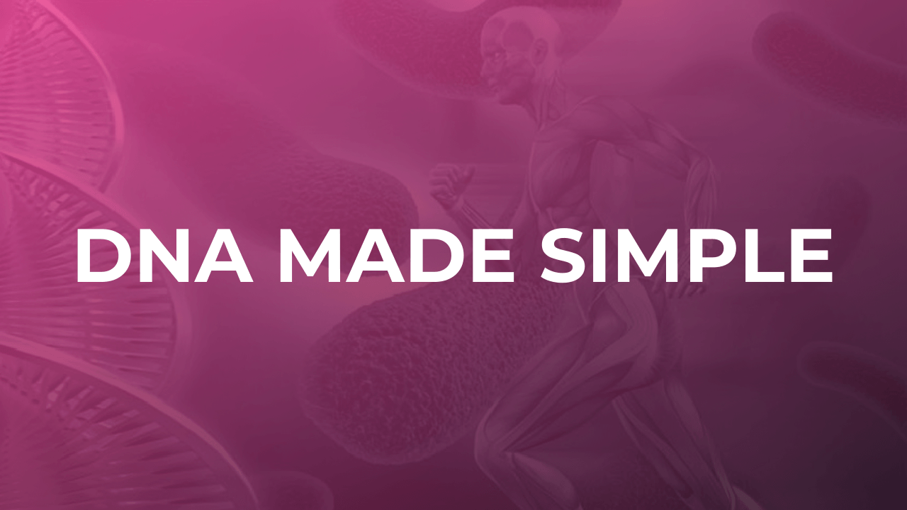 DNA Made Simple