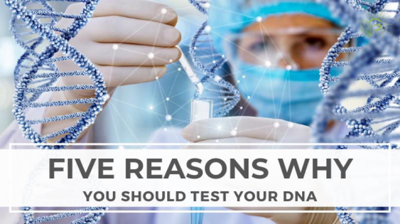5-Reasons-You-Should-Test-Your-DNA-Blog-Header