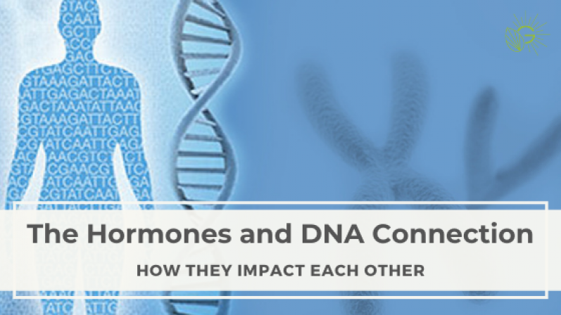 The-Hormones-and-DNA-Connection-Blog-Header-1