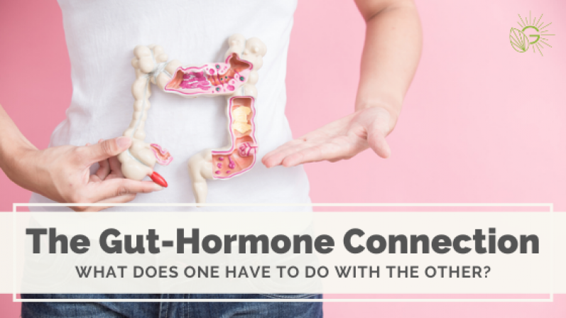 The Gut-Hormone Connection