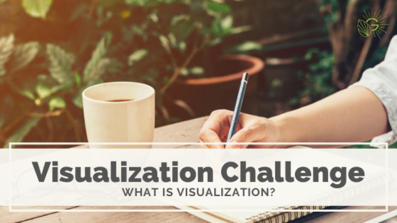 Visualization Challenge